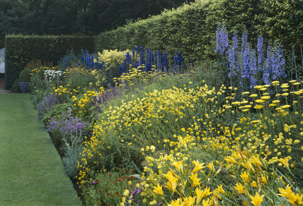 The Herbaceous Garden at its best in July at Anglesey Abbey