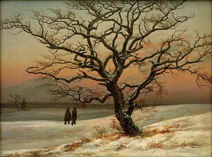 The Old Oak Tree in Winter