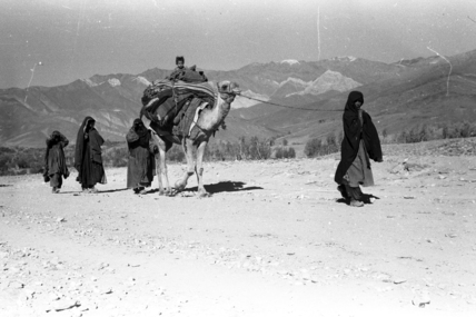 Gilzai nomads migrating