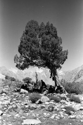 Gujar men resting
