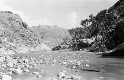 Wadi Baish