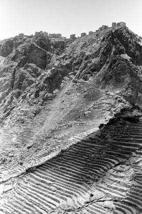 Cultivated terraces at Shahra