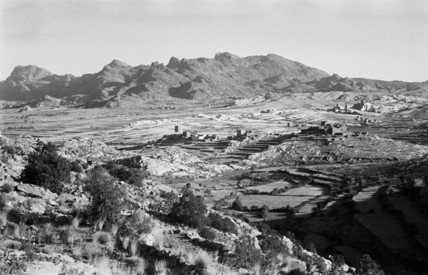 Terraced cultivation