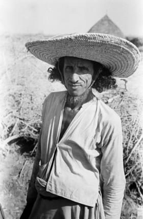 Arab cultivator