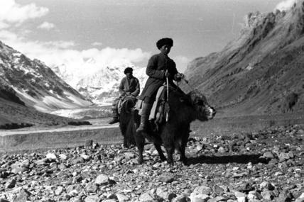 Kirghiz men riding yaks
