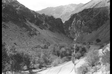 Koli Barit valley