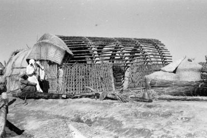 Azairij men dismantling a house