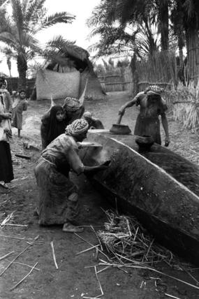 Waterproofing Thesiger's tarada