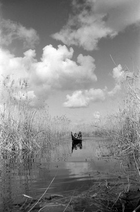Boat in the Marshes