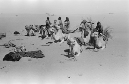 Thesiger's party loading their camels