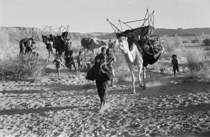 Saar nomads on the move