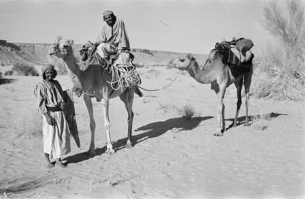 Saar nomads