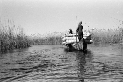 Madan men taking mats to market in the Marshes