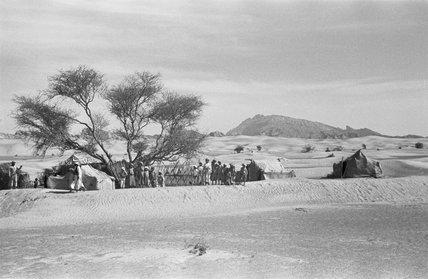Sheikh Zayed's encampment at Buraimi
