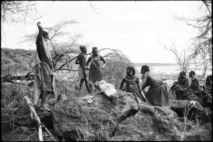 Pokot women butchering a camel