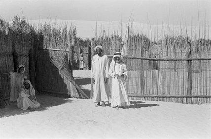 Enclosure at Liwa