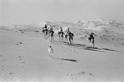 Sheikh Zayed's hawking party