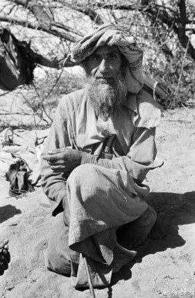 Sheikh Ali bin Said bin Rashid