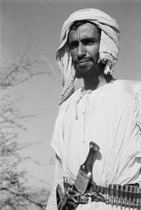 Hamaid al Mahri