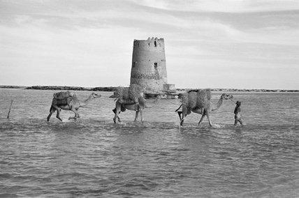 Crossing the Muqta