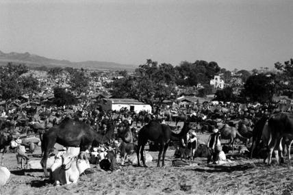 Fair at Pushkar