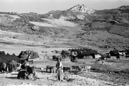 Baliki encampment on Mount Halgord