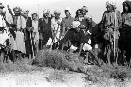 Al bu Ali men with a dead wild boar