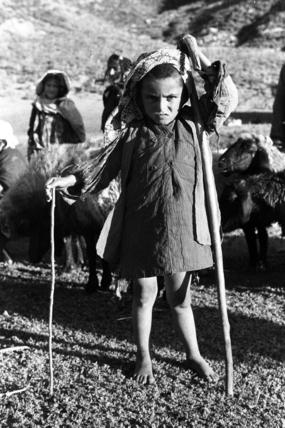 Mungur shepherd boy