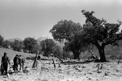 Kurdish cemetery