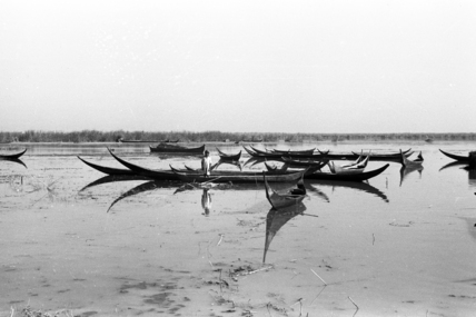 Canoes in the Marshes