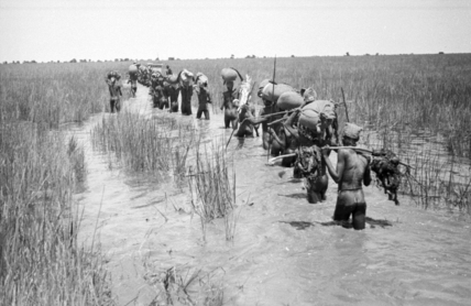 Nuer porters carrying baggage