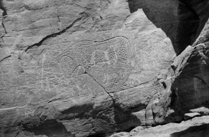 Rock art in northern Tibesti
