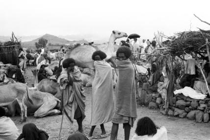 Afar men at the market in Bati