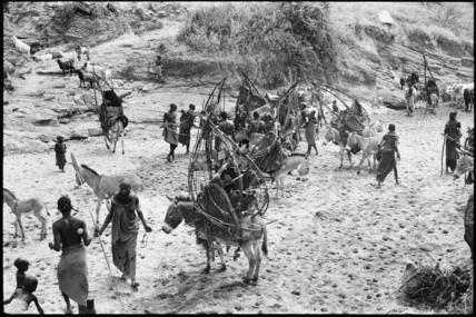 Samburu families with laden donkeys