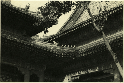 Summer Palace rooftops