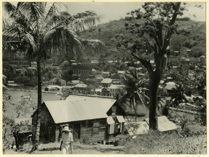 View of St. George's, Grenada