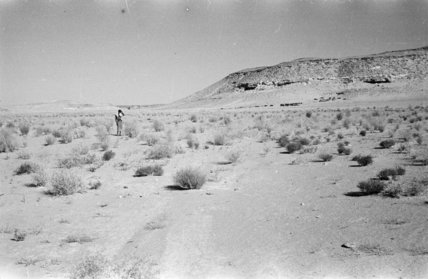 Distant view of a Bedouin ...
