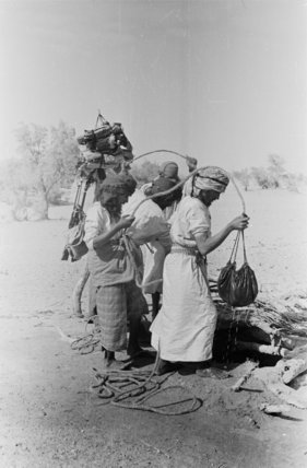 Wilfred Thesiger's party hauling water ...