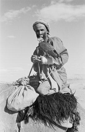 Portrait of Muhammad bin Fadil ...
