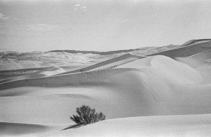 View of dunes in Al ...
