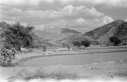 View of farmers' fields in ...