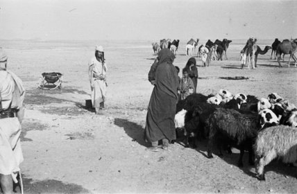 View of an Utaybah Bedouin ...