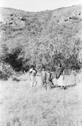 Portrait of four Qara tribesmen ...
