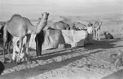View of a Manasir Bedouin ...