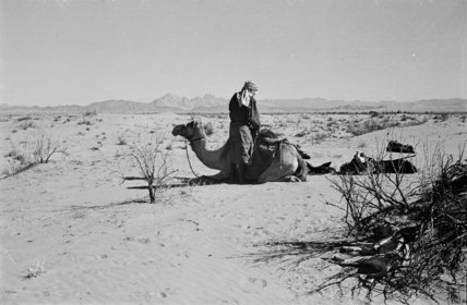 View of an Arab man ...
