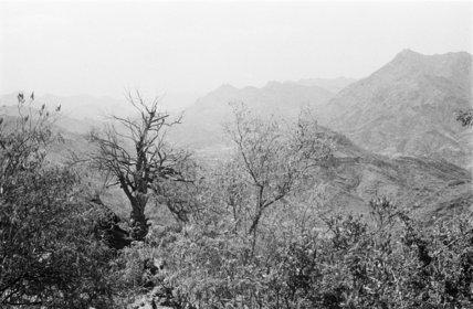 Landscape in the Bani Malik ...