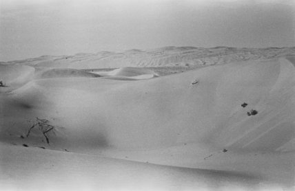 View of a high dune ...