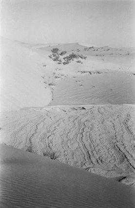 View of exposed bedrock in ...