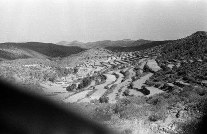 View of terraced fields cut ...