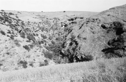 View of downs above the ...